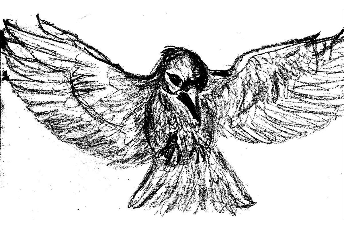 The Writer and the Raven